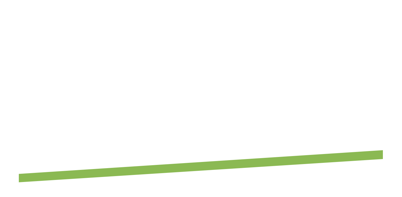 Nothing about us is Traditional